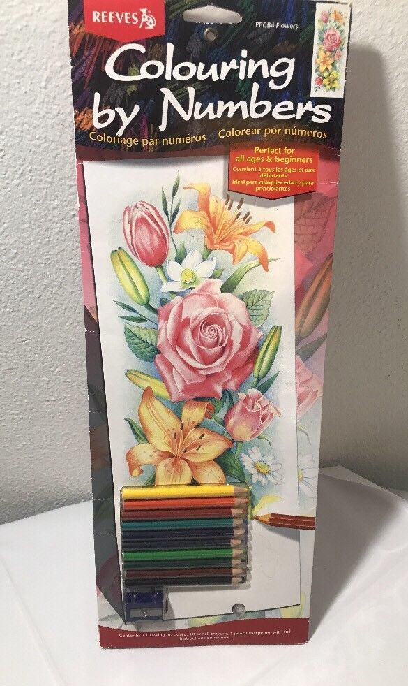 color by number pencil kit flowers reeves 17 1 4 inch by 6 1 4 inch