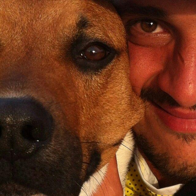 Love human, Love animal