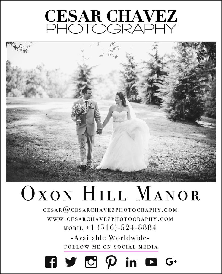 Wedding Photography Packages: Best 25+ Wedding Photography Pricing Ideas On Pinterest
