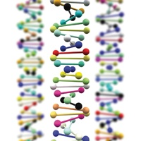 Clicking together short segments of DNA could aid biotechnology research (LaboratoryNews)