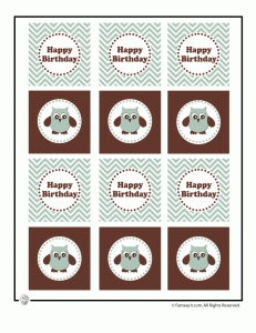 Cute Owl Birthday Printable Cupcake Toppers and Other Party Decorations