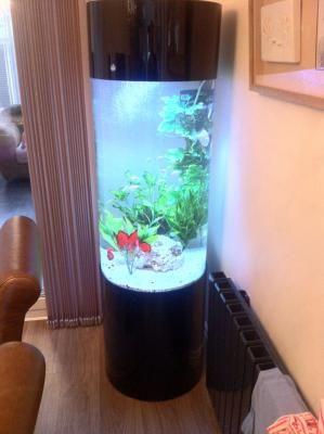 Designer Cylinder Aquarium - Click to View | Bespoke Designer Aquariums & Custom Fish Tank Accessories, Aquarium Installation and Maintenance