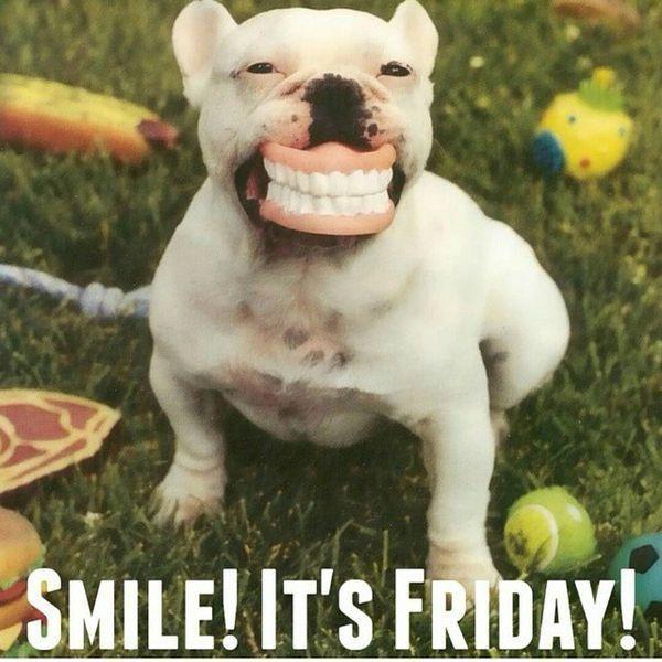 50 TGIF Memes | Funny friday memes, Happy memes, Happy friday