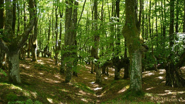 Se declaró el 29 de diciembre de 1989 con la finalidad de asegurar la protección y conservación de los recursos naturales y potenciando al mismo tiempo las explotaciones tradicionales.El Parque está constituido por la sierra de Aramotz, los Montes del Duranguesado y la sierra de Arangio. Abarca ocho términos municipales (siete en Bizkaia y uno de Alava): Abadiño, Amorebieta-Etxano, Atxondo, Dima, Durango, Izurtza, Mañaria y Aramaio, éste último en Alava.