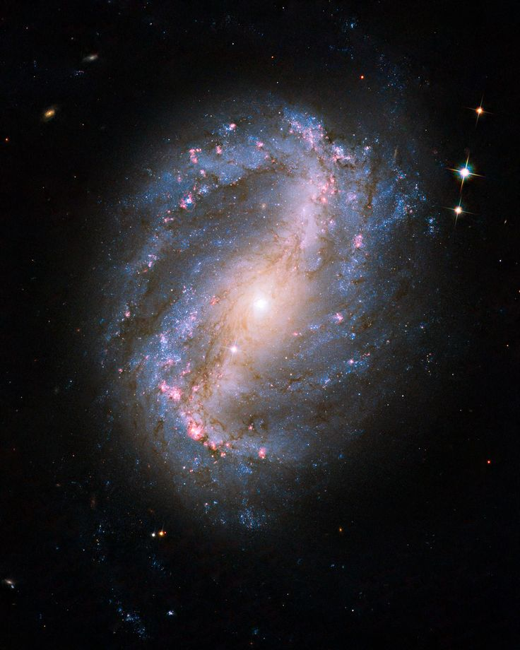 Barred spiral galaxy NGC 6217 - The barred spiral galaxy NGC 6217 was photographed on 13 June and 8 July 2009, as part of the initial testing and calibration of Hubble's ACS. The galaxy lies up to 90 million light-years away in the north circumpolar constellation Ursa Major.