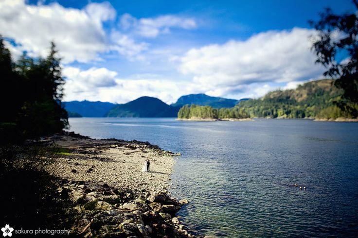 Venues: West Coast Wilderness Lodge