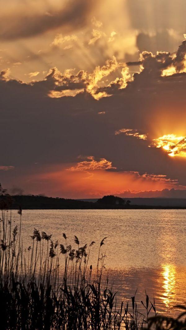 ☀ lake living
