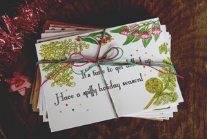 Beautiful, beautiful, beautiful Chrissy Cards featuring hand illustrated Australian Native Flowers.