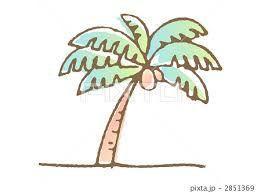 「ヤシの木 イラスト」の画像検索結果