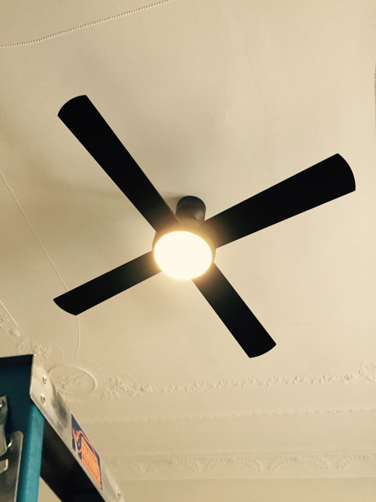 25 best hunter pacific ceiling fans images on pinterest blankets 0412 988 012 inner sydney electrician licensed electrical contractor licensed telephone line technician delivering quality service aloadofball Gallery