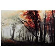 Forest Printed Canvas