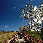 三河高原。豊田市東大林町半ノ木 http://www.karen-shimoyama.jp/sightseeing.html