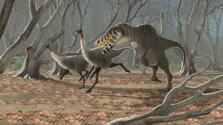 Tarbosaurus and Gallimimus by jconway on Deviantart.com.