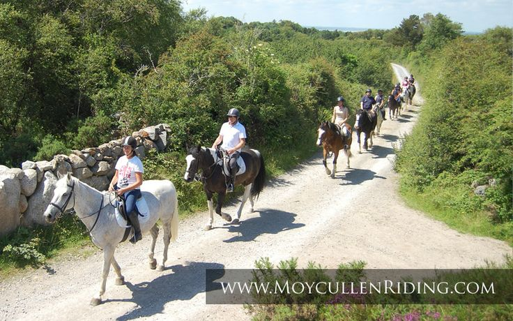 Horse Riding for all the Family with Scenic Bog Road & Beach Trekking with Moycullen Riding Centre