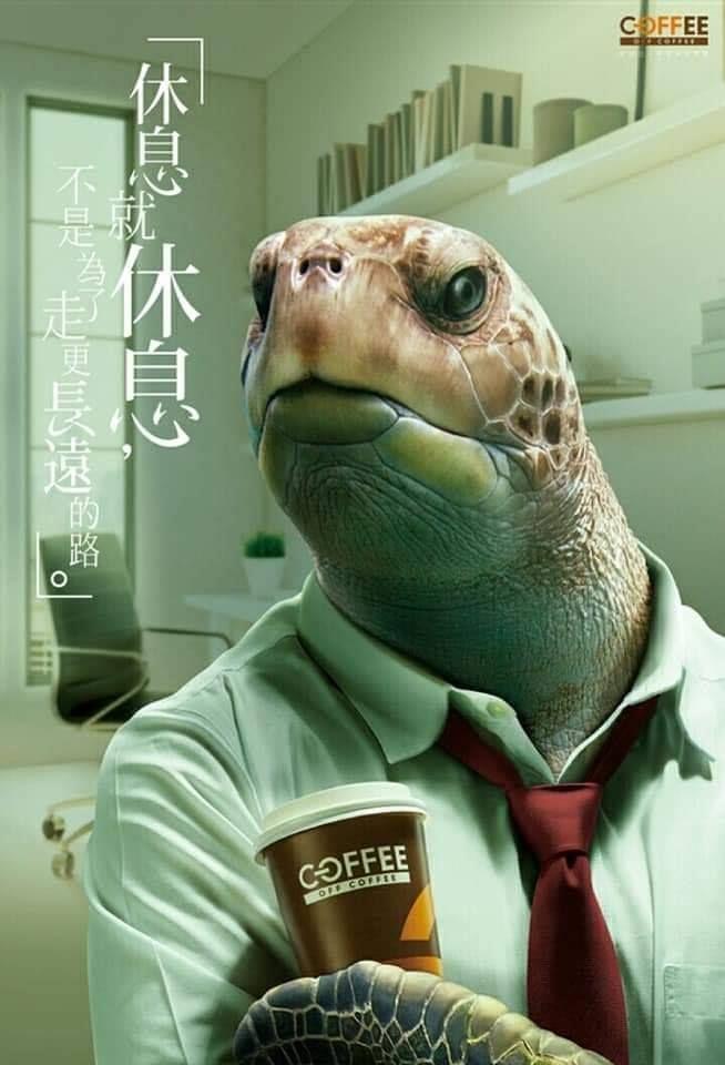 全聯coffee 海龜篇 Graphic Design Posters Ads Creative Advertising Design