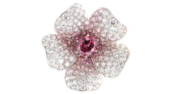 """フラワーブローチ-Flower Brooch- ただ稀少なだけでは無く、圧倒的な美しさを持つ大粒のピンクダイアモンドのフラワーブローチ。その美しさは、世界最大のピンクダイアモンド鉱山を持つARGYLE DIAMOND社の25周年を祝って出版された""""Beyond Rare""""の最後のページを飾りました。"""