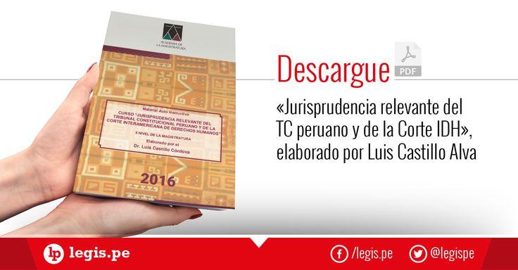 Descarga en PDF «Jurisprudencia relevante del TC peruano y de la Corte IDH», elaborado por Luis Castillo Alva