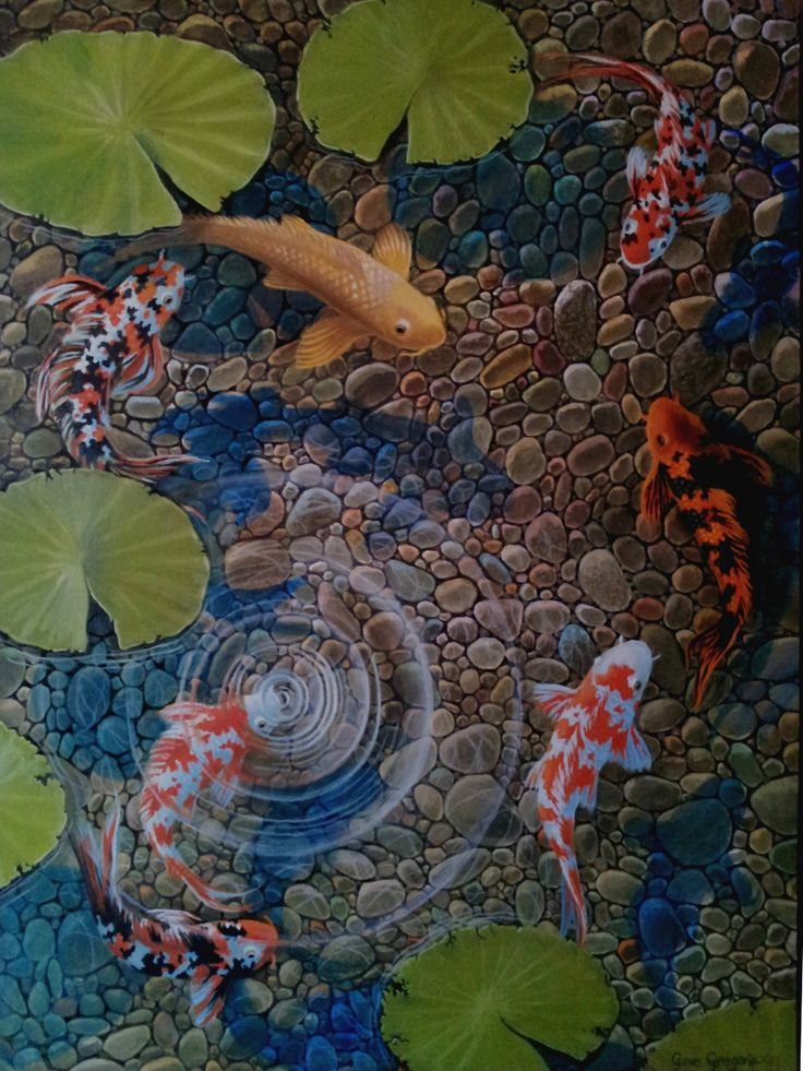 1441 best koi images on pinterest fish drawings pisces for Michael koi pond
