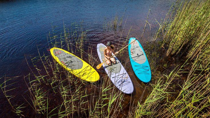 Tampa Bay Paddle Board Rentals