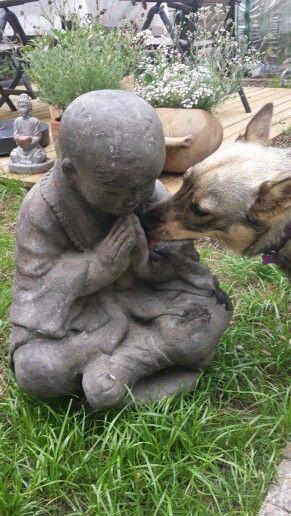Munken og Buddha
