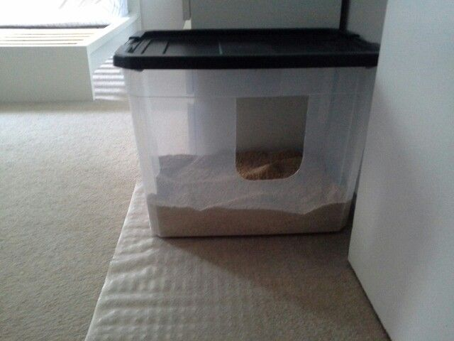 Extra Large Litter Box Storage Box With Lid Diy