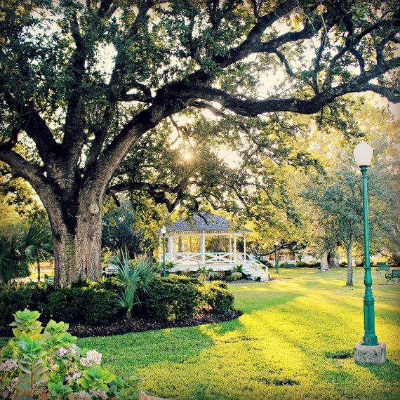 Marshall Park: square fine art photograph print of Ocean Springs, Mississippi park with gazebo, live oak tree, grass, sunlight, via Etsy.