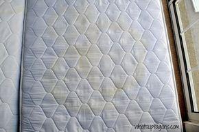 Come rimuovere le macchie e l'odore pipì da un materasso, consigli per la pulizia, come, reupholster