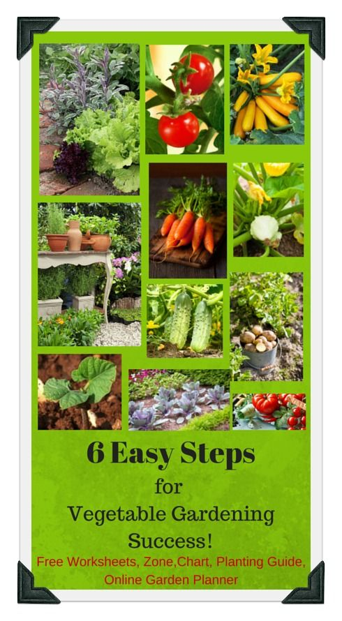 Vegetable garden plans zone 6 for Garden design plans zone 6