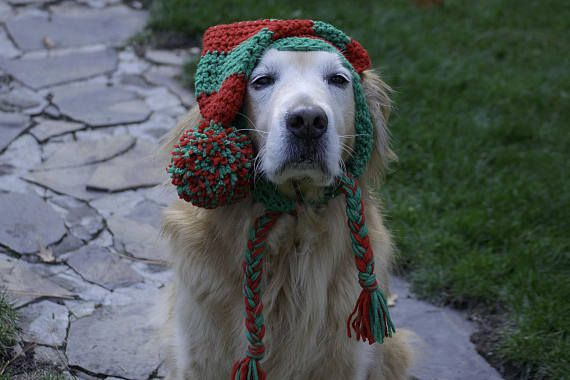 I N F O:  Unique, beautiful photography prop/ Holiday gift! Hand crochet hat for your fur baby! Fits medium-large breeds (labs, retrievers, shepherds, etc...)  ------------ C O L O R:  Choose 2 colors from drop down menu. Made to order. Refer to last image for color swatch (click