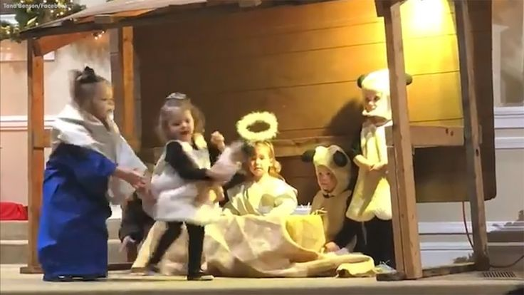Sheep, Mary tussle over baby Jesus in children's pageant gone hilariousl...