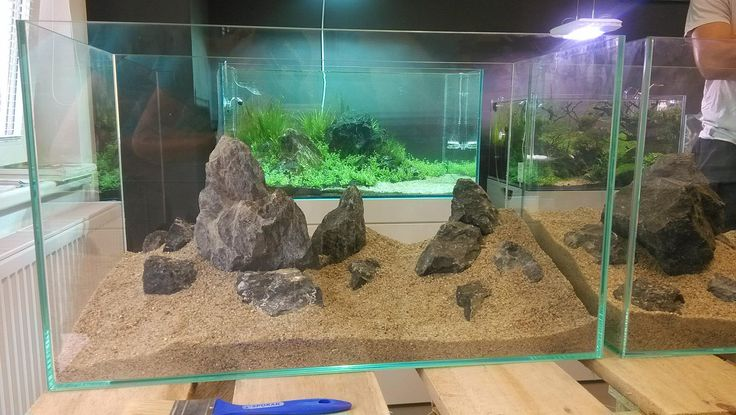 1000+ images about Aquascaping - Hardscape on Pinterest Haunted ...