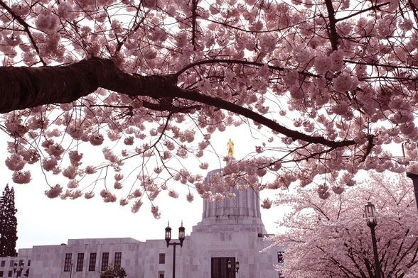 (©Jan Jackson/Oregon State Capitol)