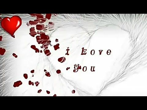Propose day special whatsapp status video song download