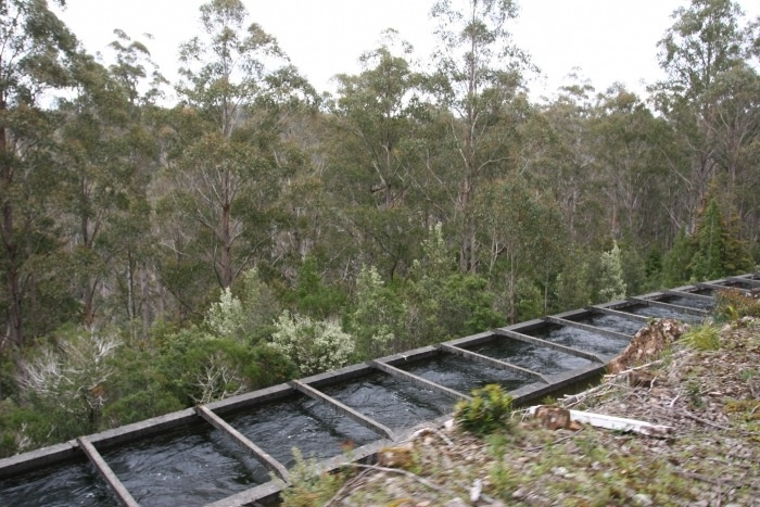 A 'flume' delivers water to the power station in the Derwent region of Tasmania