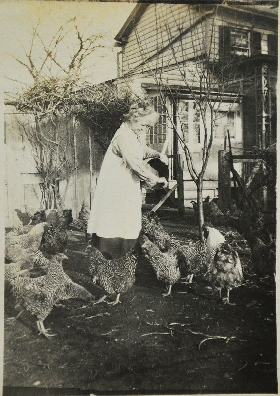 The Chicken Lady, 1918, Photo, Photography, Original Photo, Collectible. Vintage Photo,