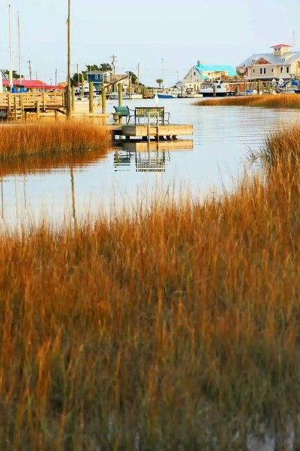 Best 200 Oak Island Nc Images On Pinterest Oak Island Cape Fear And Southport North Carolina