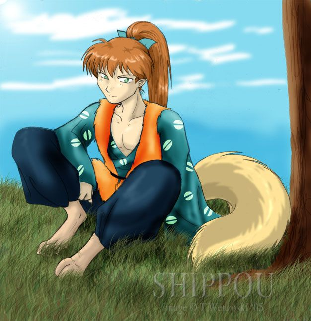 17 Best Images About Inuyasha On Pinterest: Adult Shippo By Akitohedgehog On DeviantArt