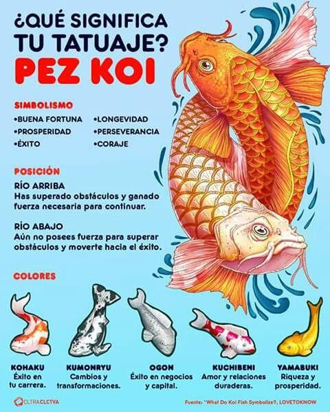750 best arte tattoo images on pinterest tattoo ideas for Significado de pez koi