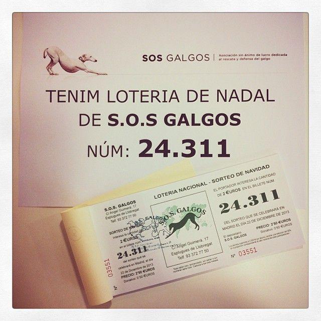 Recordeu que a Urban Pets ja podeu trobar la loteria de Nadal de @SOS Galgos! Els galguetes porten bona sort, segur!