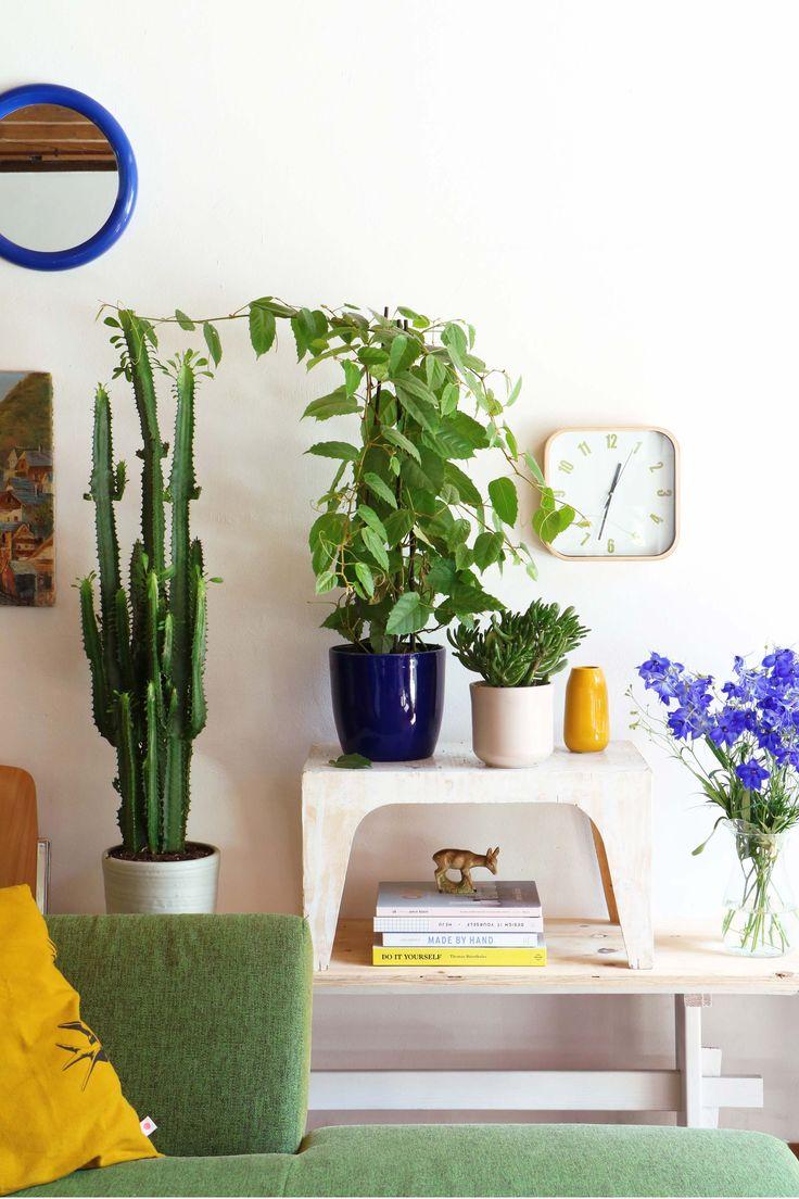 MY ATTIC voor vtwonen / binnenkijker / home tour / woonkamer / planten / plants / groen / Plantenverzameling    Fotografie: Marij Hessel