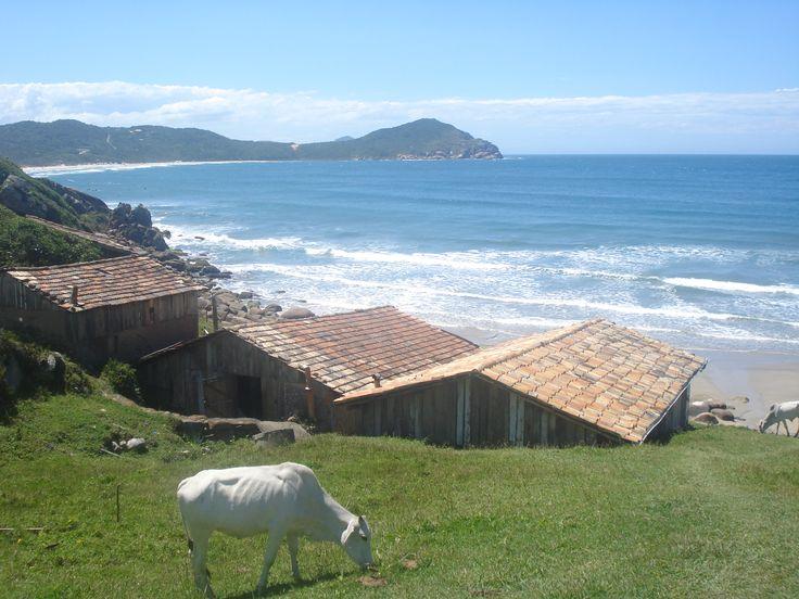 Praia do Rosa - Garopaba / Imbituba - SC