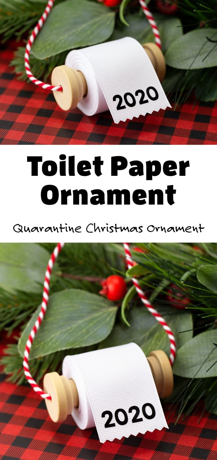 Toilet Paper Ornament in 2020 Kids christmas ornaments