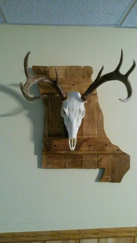European Mount but with Texas behind it- I want to do this with Ontario shape in wood
