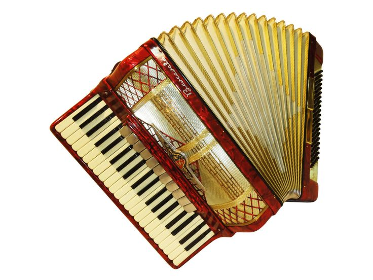 How difficult it is to learn the accordion? : Music
