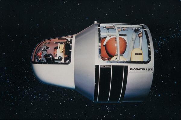 NASA model, 1960s | Nasa, Spaceship art, Nasa images