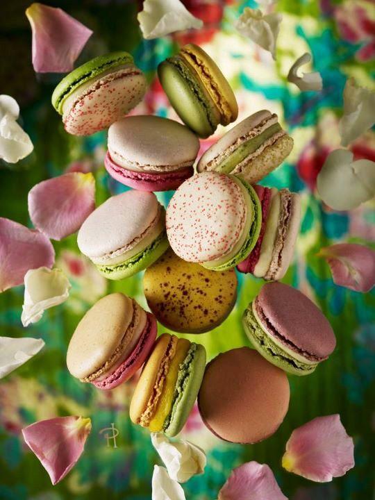 Les Jardins de Pierres Hermé ~ The king of Macarons
