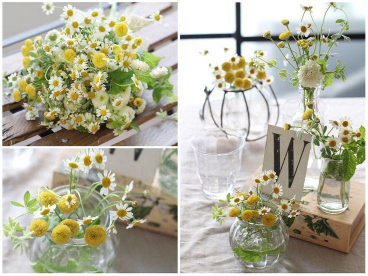 [ 会場装花:黄色・イエロー ] 太陽をいっぱいに浴びた庭からまさに今摘んで来たような、ナチュラルで優しさあふれるスタイル。 気の置けない仲間とのカジュアルなパーティーにもぴったり。 マトリカリアやハーブなどの可憐な花材を透明ガラスの花瓶やボトルにざっくりと生けて。 アンティークなアイアンの花器や洋書、少しかすれた文字がニュアンスのあるカードも飾って、よりラスティックな雰囲気もプラス。 wedding,centerpieces,natural,yellow,green,matricaria