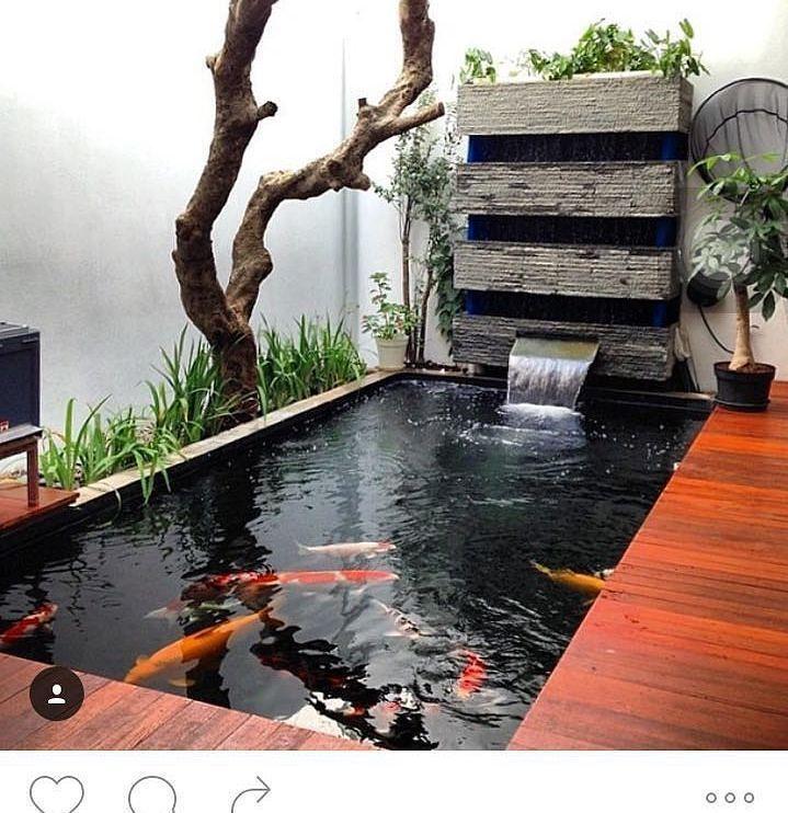 M s de 25 ideas incre bles sobre coy pond en pinterest for Estanque koi construccion