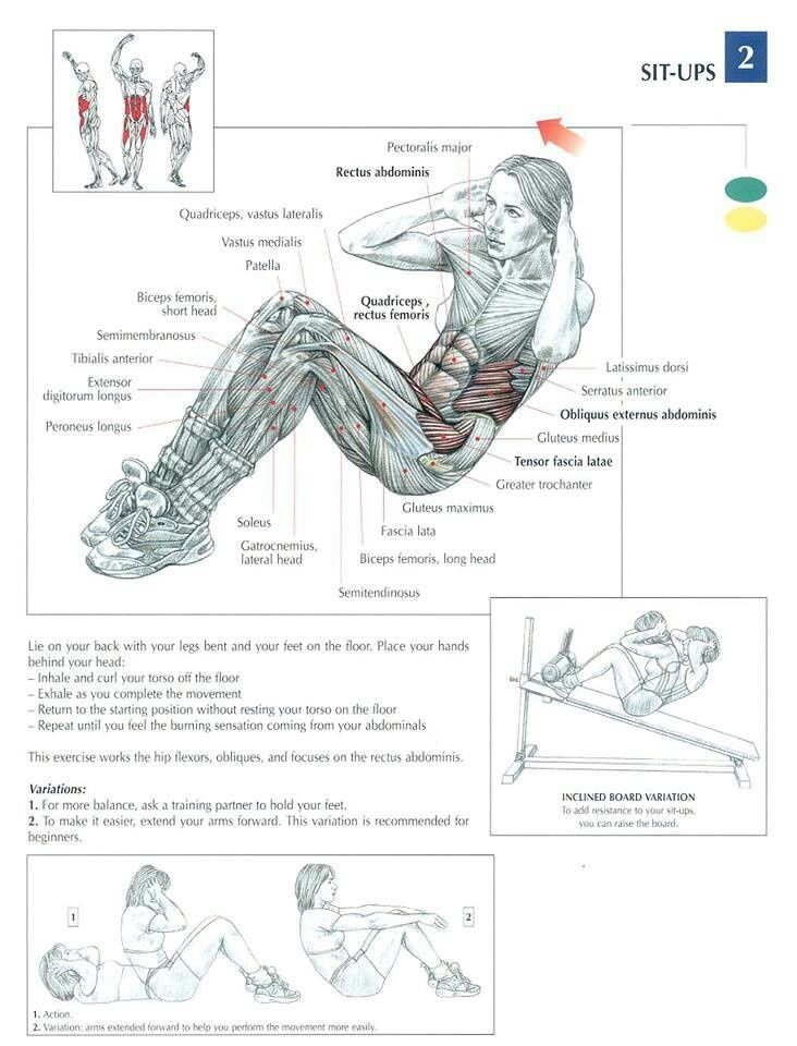 Ab Excersise - Sit Ups ~ Re-Pinned by Crossed Irons Fitness