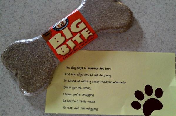 RAK for dogs - such a fun, unexpected idea! #RAK #kindness